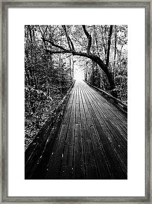 The Path Framed Print by Scott Pellegrin