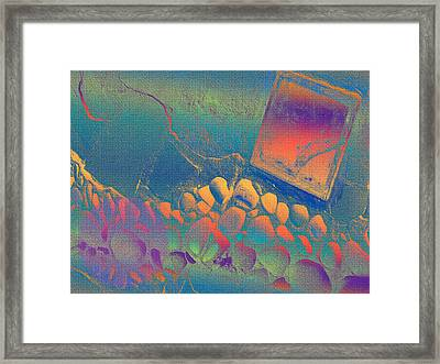 The Path To Dreams And Wishes Framed Print