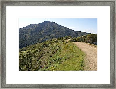 The Path To Tamalpais Framed Print by Ben Upham III