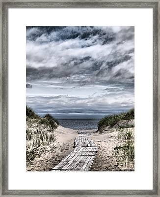 The Path To The Beach Framed Print