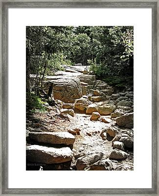 The Path To The Mountain Top Framed Print by Garth Glazier