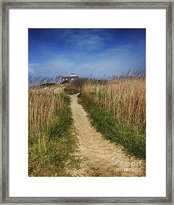 The Pathway Home Framed Print by Tom Gari Gallery-Three-Photography