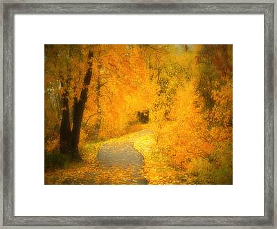 The Pathway Of Fallen Leaves Framed Print by Tara Turner