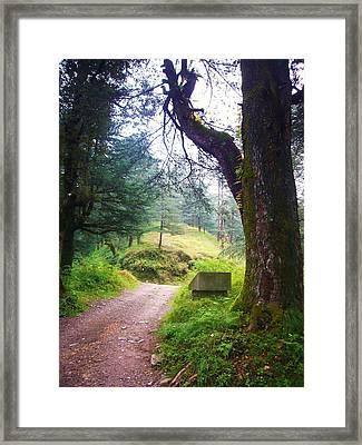 The Pathway Framed Print by Sunaina Serna Ahluwalia