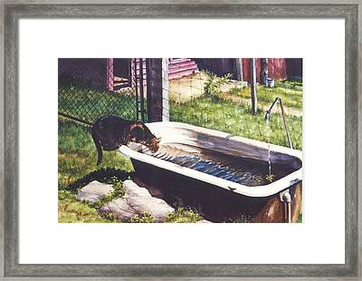 The Paws That Refreshes Framed Print by Marion  Hylton