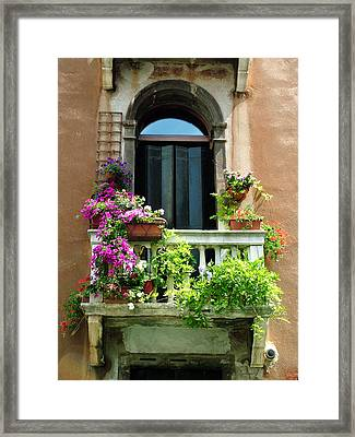 The Peach Wall With Fushia Flowers Framed Print by Donna Corless