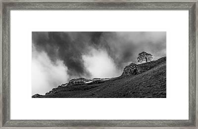 The Peak Tree Framed Print