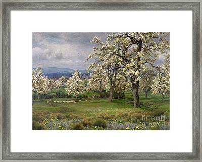 The Pear Orchard Framed Print by Alfred Parsons