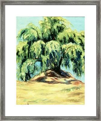 The Pepper Tree Framed Print by Helen O Hara