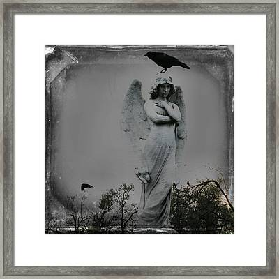 The Perch Of An Angel Framed Print