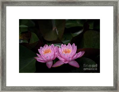The Perfect Couple Framed Print