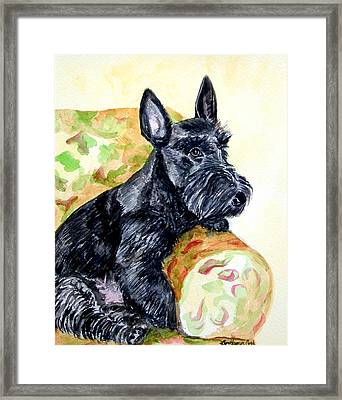 The Perfect Guest - Scottish Terrier Framed Print