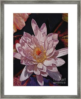 The Perfect Lily Framed Print by Melissa Tobia