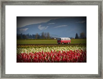 The Perfect Parking Spot Framed Print by Karla DeCamp