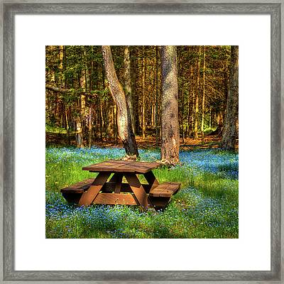 The Perfect Picnic Spot Framed Print by David Patterson
