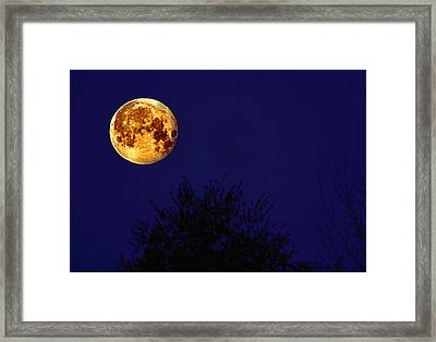 The Perigee Moon Framed Print