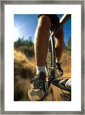 The Photographer Captures A Close View Framed Print by Barry Tessman