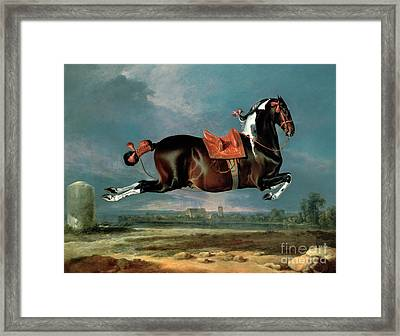 The Piebald Horse Framed Print by Johann Georg Hamilton