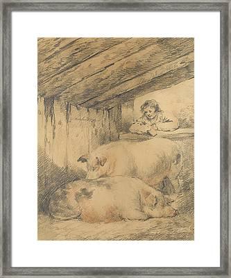 The Pig Sty Framed Print