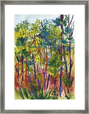 The Pines Framed Print