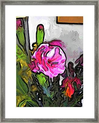 The Pink Flower With The Burgundy Buds Framed Print