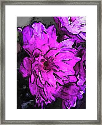 The Pink Flower With The Lavender Edges Framed Print