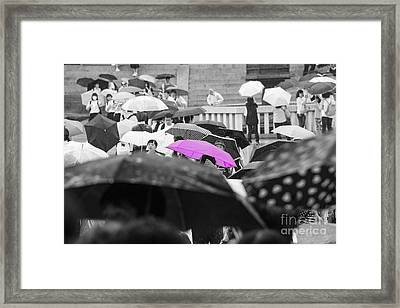 The Pink Umbrella Framed Print
