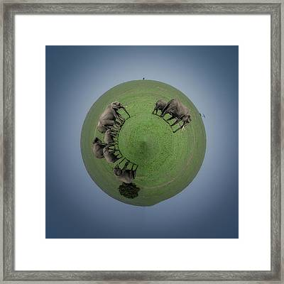 The Planet Of Elephants Framed Print by Alain Gaymard