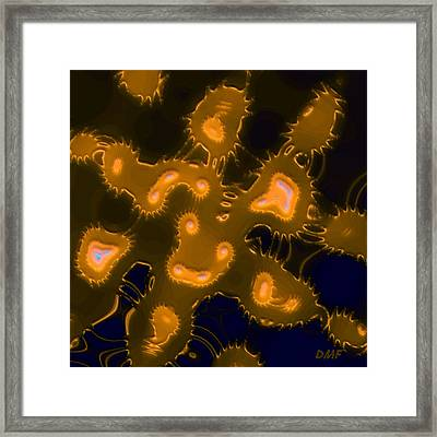 The Plankton Framed Print by Dragica  Micki Fortuna
