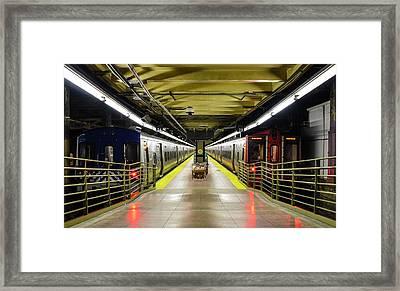 The Platform Framed Print