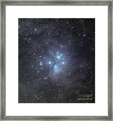The Pleiades Surrounded By Dust Framed Print by Phillip Jones