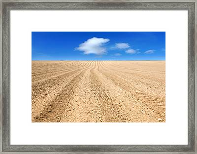 The Ploughed Field 2 Framed Print by Mal Bray