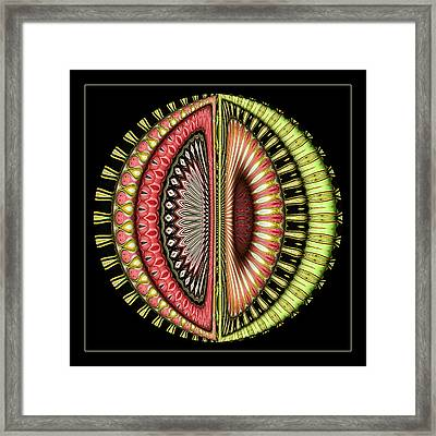 The Pod Framed Print by Wendy J St Christopher