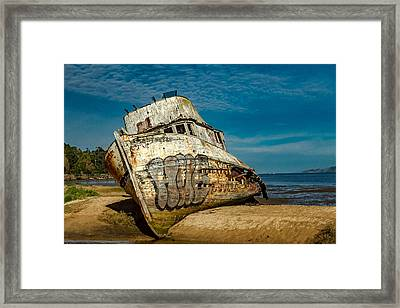 The Point Reyes Beached Framed Print by Bill Gallagher
