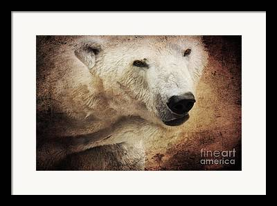 Composings North Pole Framed Prints