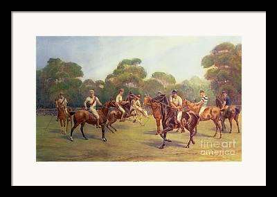 Polo Framed Prints