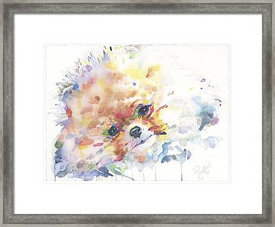The Pomeranian Framed Print