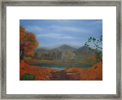 The Pond Framed Print by Barbara Hayes