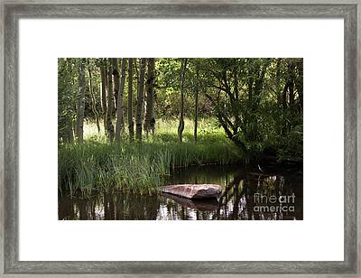 The Pond  Framed Print