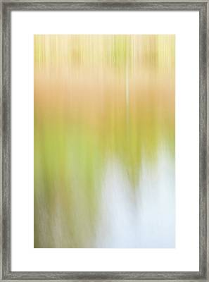 Framed Print featuring the photograph The Pond by Deborah Hughes