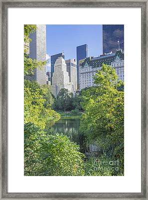 The Pond Framed Print by Ed Rooney