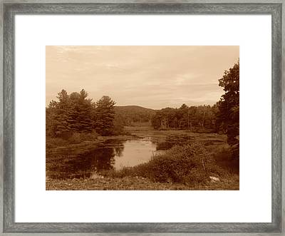 The Pond Framed Print by Eric Radclyffe