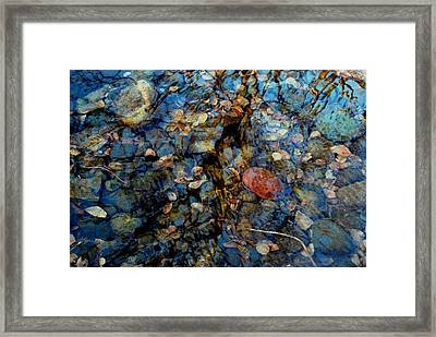 The Pond In Autumn Framed Print