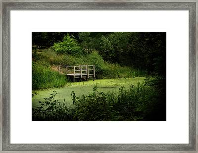 Framed Print featuring the photograph The Pond by Jeremy Lavender Photography