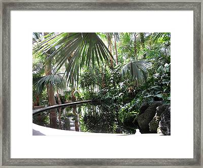The Pool Framed Print by France Garrido
