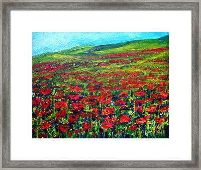 The Poppy Fields Framed Print