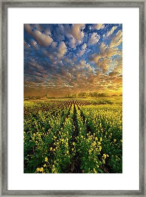 The Possibilities Are Many Framed Print by Phil Koch