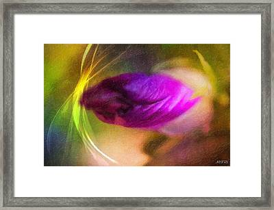 The Power Of Dreams Framed Print by Nicole Frischlich