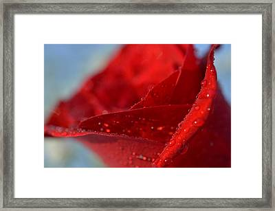 The Power Of Passion Framed Print