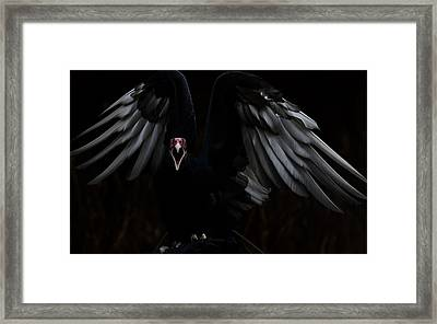 Suli - The Dragon Limited Edition 10/50 Framed Print